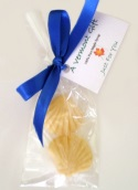Maple Candy Seashells Vermont Wedding Favor